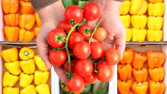 水果进口手续及流程