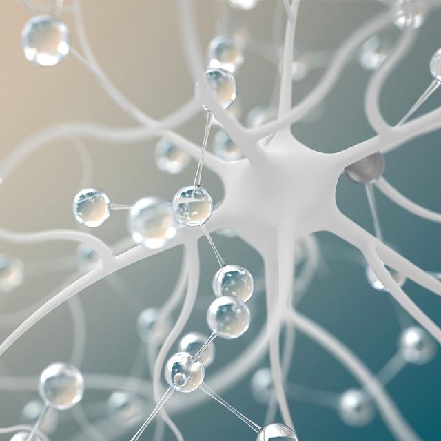 进博故事|GE医疗:进博会创造了无限的联结可能